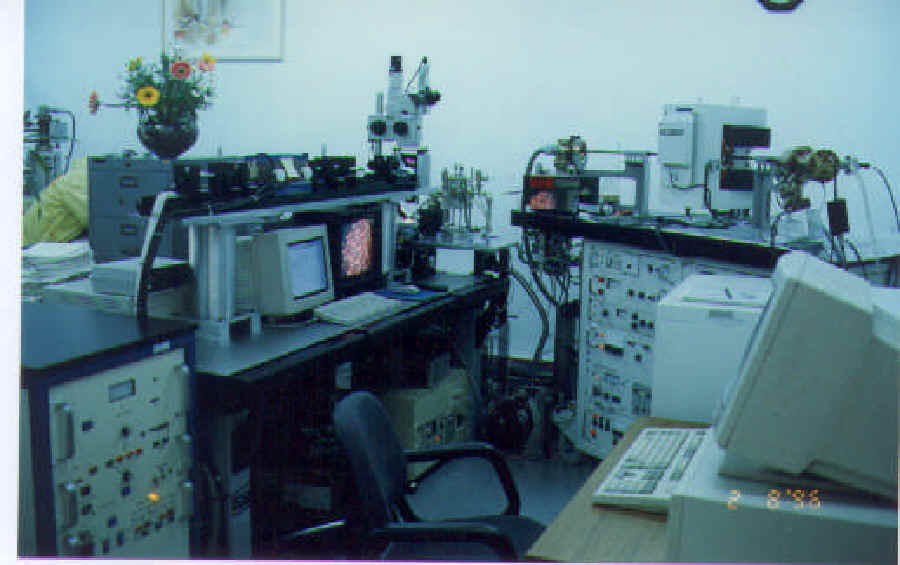 Argon Geochronology Laboratory
